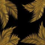 struttura per testo fatto da foglia di palma verde su fondo bianco fotografia stock