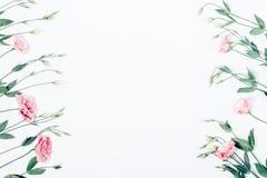 Struttura posta piana floreale dei fiori rosa su fondo bianco fotografia stock libera da diritti