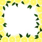 Struttura quadrata dai limoni con le foglie su un fondo bianco illustrazione di stock