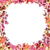Struttura quadrata dell'acquerello disegnato a mano con i piccoli fiori rossi ed arancio di rosa del prato, su fondo bianco Proge fotografie stock