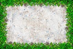 Struttura quadrata dell'erba con copia-spazio sul fondo della sabbia Immagine Stock Libera da Diritti