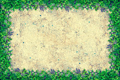 Struttura quadrata dell'erba con copia-spazio sul fondo della sabbia Fotografia Stock