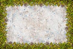 Struttura quadrata dell'erba con copia-spazio sul fondo della sabbia Immagine Stock