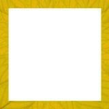 Struttura quadrata delle foglie gialle di struttura con Immagini Stock