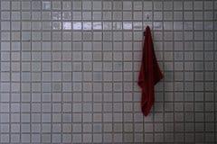 Struttura quadrata delle mattonelle Fotografia Stock