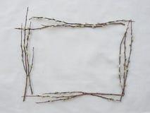 Struttura quadrata fatta dai rami del salice purulento Fotografia Stock