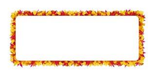 Struttura rettangolare fatta delle foglie di autunno Modello di vettore Immagine Stock Libera da Diritti
