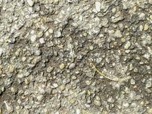 Struttura rocciosa Immagine Stock