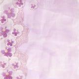 Struttura rosa con parecchi pansies royalty illustrazione gratis