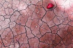 Struttura rossa d'annata astratta della crepa di tono su suolo asciutto Fotografia Stock Libera da Diritti