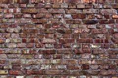 Struttura rossa del muro di mattoni immagine stock libera da diritti