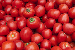 Struttura rossa del raccolto di pomodori fotografie stock