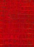 Struttura rossa dell'imitazione del cuoio del rettile Fotografie Stock