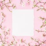 Struttura rotonda con i fiori della molla e l'automobile d'annata del Libro Bianco su fondo rosa Disposizione piana, vista superi immagini stock