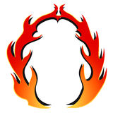 Struttura rotonda del fiore del fuoco Fotografia Stock Libera da Diritti