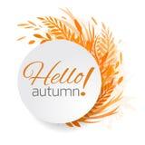 Struttura rotonda delle foglie, delle piante e delle erbe di autunno Immagini Stock