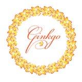 Struttura rotonda delle foglie gialle del ginkgo biloba watercolor illustrazione di stock