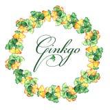 Struttura rotonda di giallo e foglie verdi del ginkgo biloba watercolor illustrazione di stock