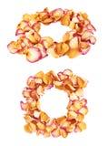 Struttura rotonda fatta dei petali rosa rosa come composizione romantica sopra fondo bianco fotografia stock