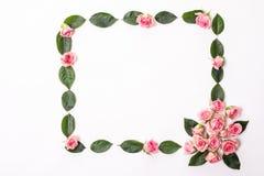 Struttura rotonda fatta delle rose rosa e beige, foglie verdi, rami, modello floreale su fondo bianco Disposizione piana, vista s fotografia stock libera da diritti
