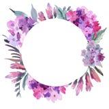 Struttura rotonda floreale dell'acquerello con l'ortensia rosa Cartolina d'auguri dell'invito royalty illustrazione gratis
