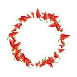 Struttura rotonda succosa del peperoncino rosso Fotografia Stock