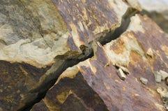 Struttura rotta e incrinata della roccia della quarzite Immagini Stock Libere da Diritti