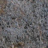 Struttura scura di Grey Coarse Concrete Stone Wall, macro primo piano orizzontale Gray Rustic Textured naturale dettagliato stagi fotografia stock