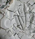 Struttura seccata al sole di Bedak Sejuk fotografie stock
