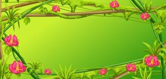 Struttura selvaggia torta dei rami delle liane Viti della giungla illustrazione di stock