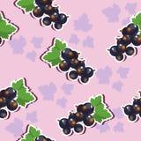 Struttura senza cuciture con l'uva passa Immagini Stock