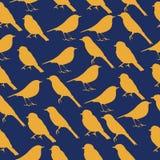 Struttura senza cuciture con le siluette degli uccelli Fotografia Stock