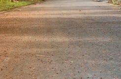 Struttura senza cuciture del cemento del pavimento Il modello senza cuciture di superficie Fotografia Stock Libera da Diritti