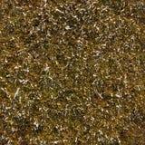 Struttura senza cuciture dell'erba di inverno Fotografie Stock