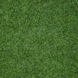Struttura senza cuciture dell'erba verde Senza cuciture soltanto nei dimens orizzontali Immagini Stock Libere da Diritti