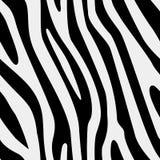 Struttura senza cuciture della zebra di vettore Fotografia Stock