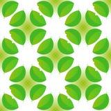 Struttura senza cuciture floreale con i fiori verdi Fotografia Stock