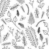 Struttura senza cuciture floreale decorata di scarabocchio Immagine Stock