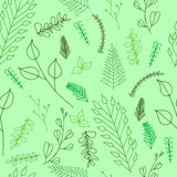 Struttura senza cuciture floreale decorata di scarabocchio Immagine Stock Libera da Diritti