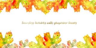 Struttura senza cuciture lunga del confine delle foglie di vite dell'uva di caduta Fogliame di autunno isolato su fondo bianco Ac illustrazione vettoriale