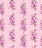 Struttura senza giunte con il tema floreale Fotografia Stock