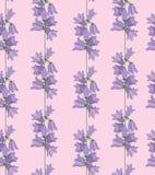 Struttura senza giunte con l'ornamento floreale Fotografie Stock Libere da Diritti