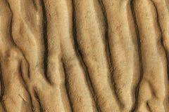 Struttura senza giunte della parte inferiore della sabbia Immagini Stock