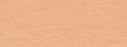 Struttura senza giunte di legno Primavera del mondo reale Fotografia Stock