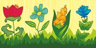 Struttura senza giunte floreale con i fiori luminosi ed il le Fotografie Stock Libere da Diritti