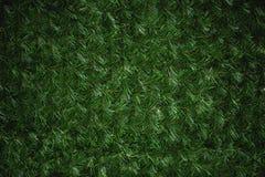 Struttura sintetica verde del pino Immagini Stock Libere da Diritti
