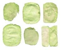 Struttura stabilita del Libro Verde isolata Fotografie Stock Libere da Diritti