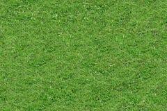Struttura Tileable senza cuciture del fondo dell'erba verde Fotografia Stock Libera da Diritti