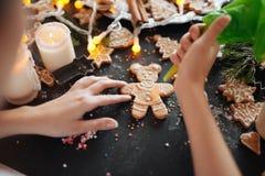 Struttura tradizionale di natale con le spezie, biscotti di speculoos Immagini Stock Libere da Diritti