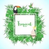 Struttura tropicale con le foglie e gli uccelli esotici illustrazione vettoriale